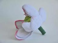 编织的荷花