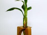 盈盈独立:木质玻璃花器