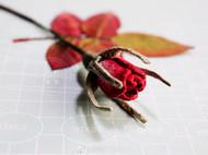 《花萼相辉》刺绣玫瑰花苞