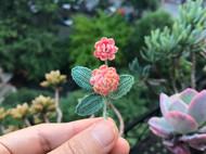 钩针花饰-洋甘菊、大丽花