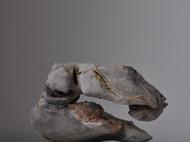 太湖石赏石