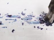 背上营养吧之紫甘蓝