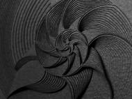 纸雕作品——贝壳/黑