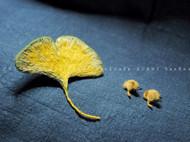 刺绣银杏叶胸针/耳钉