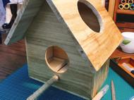 小木屋—鸟儿们来过冬了