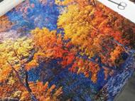 纯手工刺绣《斑斓之秋》