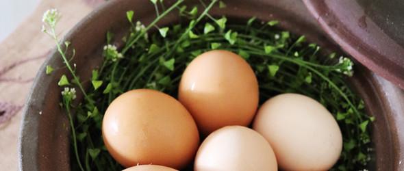 三月三 荠菜花煮鸡蛋