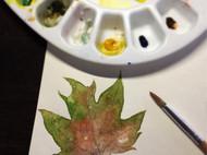 水粉画-叶子