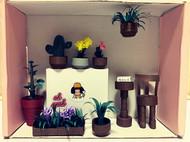 我的小花园