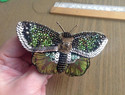 珠绣蝴蝶教程Part 2:如何将绣好的珠绣蝴蝶制作成胸针?