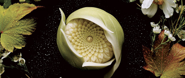 和果子的制作艺术 | Junichi Mitsubori