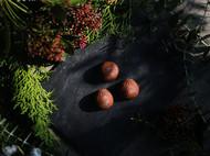 【松鼠的礼物】| Elsa Cook 2015情人节 手工巧克力礼盒