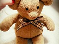 小熊一家 布娃娃