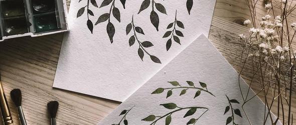 黑白的手绘植物 | Mariia Startseva