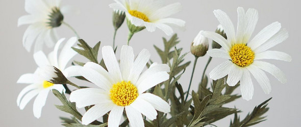 @evabloom_atelier:美丽自然的皱纹纸花