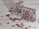 滴胶DIY教程:尘封植物的自然美泰,透明树脂配饰制作教程