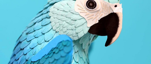 飞翔的纸鸟   Diana Beltran Herrera