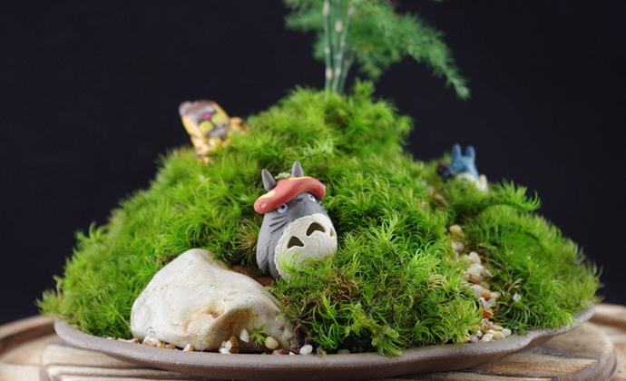 屿路生活 苔藓微景观 苔藓小品 苔藓盆栽 宫崎骏-龙猫『大』