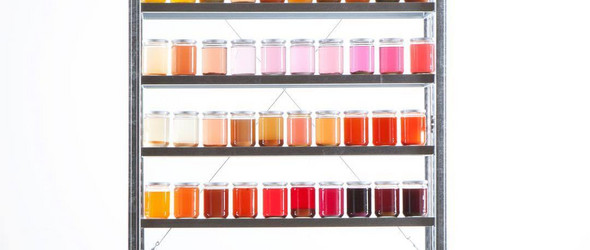 植物的本色|荷兰Raw Color工作室的色彩研究