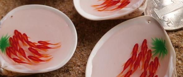 贝壳里的辣椒小鱼仔