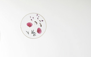 押花画diy教程:无需等待二周,使用粘合衬和鲜花简单制作押花透明画!