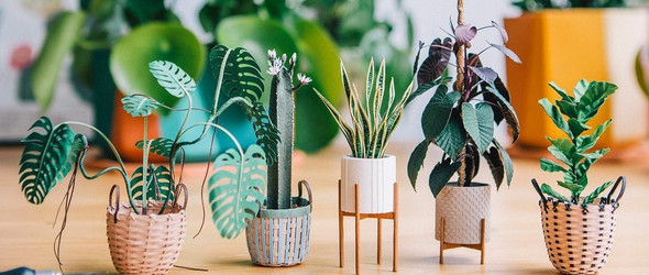 从植物,美食到插画,建筑,纸艺家Raya精巧而逼真的微型纸雕作品欣赏
