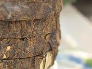 半瓯 安化黑茶,湖南非物质文化遗产