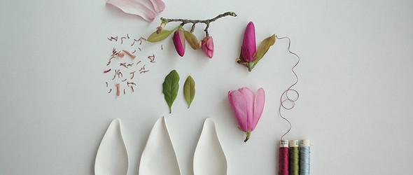 清新的植物标本和摄影 - 来自艺术家Paula Valentim
