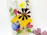 oppor9plus手工DIY真花手机壳苹果6/7plus鲜花标本透明滴胶防摔壳