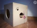 做了这个猫匣子之后,猫大人再也不玩儿纸箱了