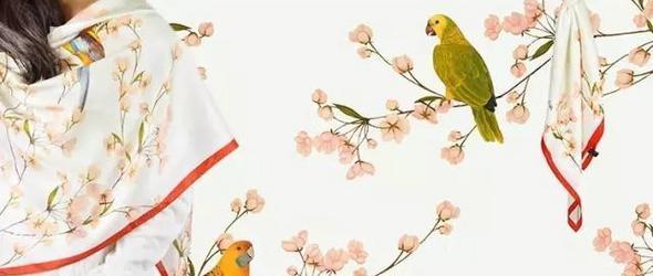 情人节丨送给最特别的人,一朵永不凋零的花