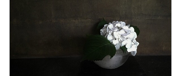 和纸 书法 静物 - 日本和纸作家 hatano wataru 安静的摄影艺术