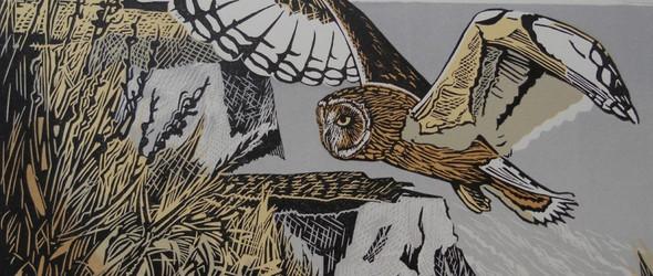 鸟与建筑 | 英国版画艺术家 Pam Grimmond