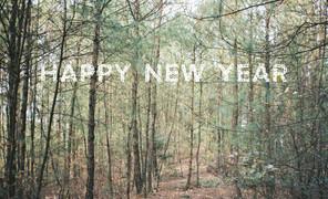 新年快乐。