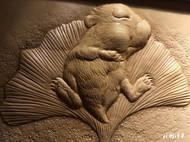 萌萌哒的一只小仓鼠皮塑