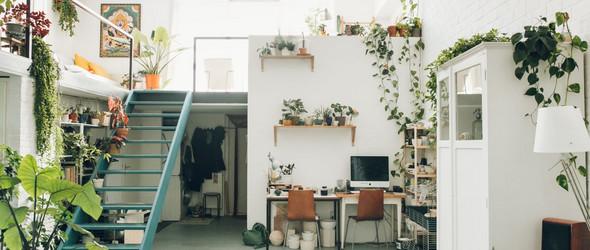 Studio Tour| 陶艺家Rena 充满光和植物的陶艺工作室