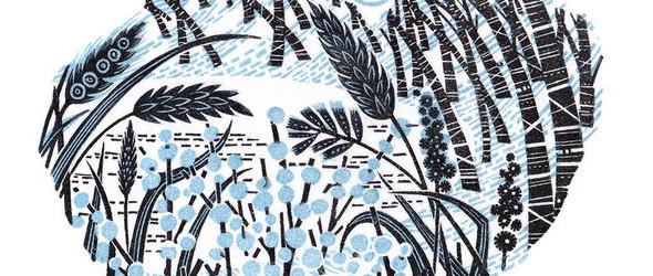 画尽植物的肆意蔓延:安吉·莱温(Angie Lewin)的版画和水彩