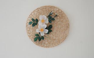 纸艺野蔷薇:纸为你绽放(手工纸花diy教程)