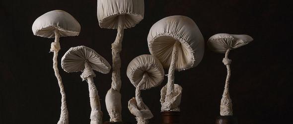 布艺蘑菇软雕塑 | Mister Finch