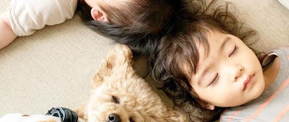 一个名字叫yuzu的女生和一条名字叫coco的泰迪狗 | ゆずここ