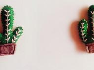仙人掌盆栽~