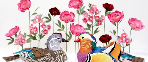 4000根羽毛的纸鸟雕塑   纸艺家 Diana Beltran Herrera 华丽的鸟类雕塑