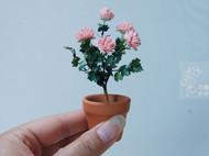 纸艺我的小花园系列之二