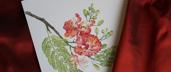 清新复古风的手绘植物 | 越南插画师Trongtran Design88作品