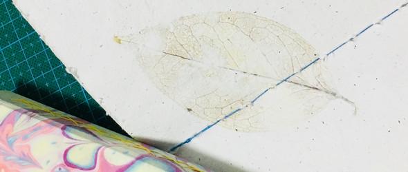 手工记录[上] | 叶脉制作 & 手造花草纸 #Nature around#