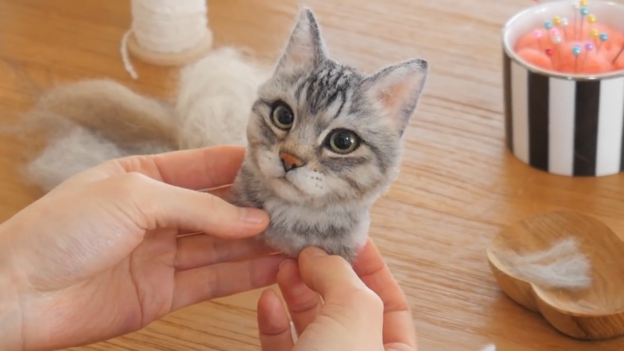 羊毛毡猫猫制作视频之一:概览