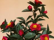 鱼娘娘手工折纸花艺 红茶花