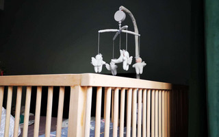 DIY婴儿床 | 舐犊之意