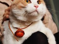 手工制作 植鞣牛皮铃铛 猫狗宠物铃铛 项链 直径4cm