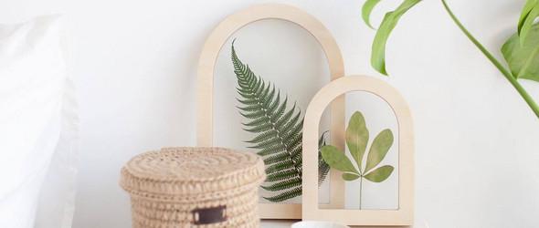 My Botanica:植物装饰画